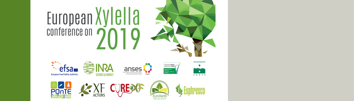 Second European Conference on Xylella fastidiosa: How research can support solutions